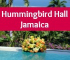 Luxury Destination Weddings in Jamacia