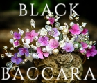 Black Baccara Boutique Florist